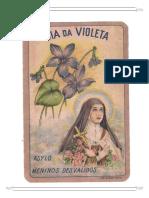 Dia Da Violeta Asylo Meninos Desvalidos