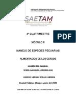 ALIMENTACIÓN DEL CERDO.docx