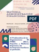 4.1 Problemática de las Organizaciones MI PYMES y familiares (1).pdf