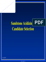 Day 2 - Sandstone Acidizing - Candidate Selection.pdf
