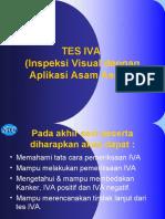Tes IVA