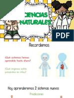 ciencias-naturales-sistema-respiratorio-y-circulatorio tercero.pdf