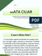 MATA CILIAR-Completo