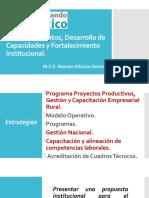 Emprendimientos, Desarrollo de Capacidades y Fortalecimiento Institucional