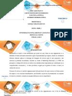 Trabajo Colaborativo - Unidad 2 Fase 3 Identificar las principales características del servicio