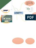 Mapa Mental 3.1 Condensadores y Dieléctricos