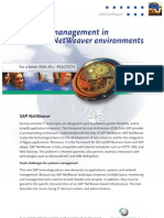 Systems management in SAP NetWeaver environments