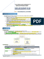 003 Handout Neuromusculoskelital.pdf