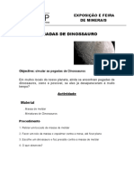 Protocolo_Experimental - PEGADAS DE DINOSSAURO.doc