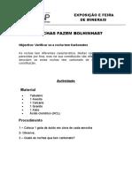 Protocolo_Experimental -Reacção do calcário ao Acido