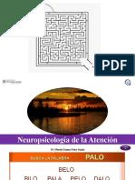 NEUROPSICOLOGÍA DE LA ATENCIÓN_1.pptx