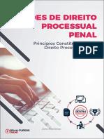 33201765-principios-constitucionais-do-direito-processual-penal.pdf