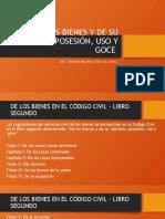 DE LOS BIENES Y DE SU DOMINIO POSESIÓN (1).pptx