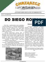 Chrząszcz - Styczeń 2009 (nr 34)