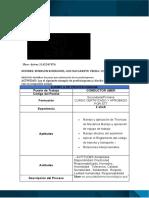 EJEMPLO PROFESIOGRAMA  CONDUCTOR.doc