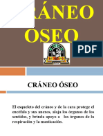 huesosdelcrneo2013-130820120155-phpapp02.ppt