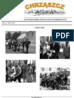 Chrząszcz - Maj 2009 (nr 38)