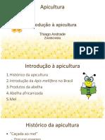 Apicultura Aula 1 - introdução - slides.pdf