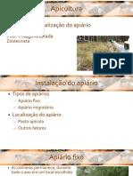 Apicultura Aula 5 - localização do apiário.pdf