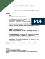 ESTRUCTURA Y CARATERISTICAS DEL  TRABAJO FINAL