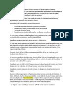 2.5-Hernando-de-Magallanes-y-el-antimeridiano.docx