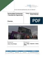 ESTRUCTURACION DE PUENTE VEHICULAR-examne