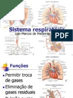 Material_anatomia_-_respiratório.pdf