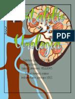 portafolio urologia grupo 3