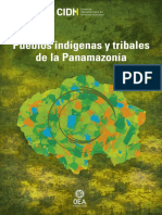 Panamazonia2019.pdf