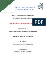 Practica 3 Lab de bacteriologia I