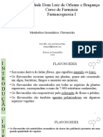 Aula 14- Metabólitos Secundários Flavonoides