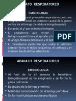 aparatorespiratorio-110919195301-phpapp01