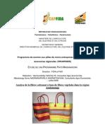 FILIERE_ARTISANAT_A_BASE_DE_FIBRES_VEGETALES-formatted