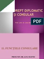 11. FUNCTIILE CONSULARE