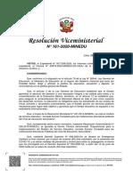 RVM 161-2020-MINEDU