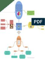 Parcial Formación Integral.pdf