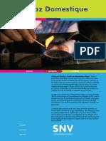 snv_biogaz_domestique.pdf