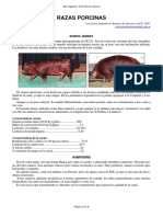 45-razas_porcinas.