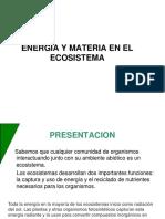 ENERGIA Y MATERIA ECOSISTEMA
