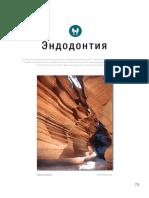 ENDO.pdf
