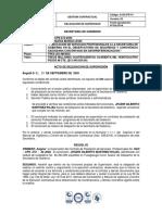 SUPERVISIÓN CONTRATO SGO CPS 272 2020.pdf