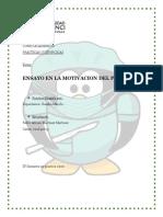 ENSAYO MOTIVACION DEL PACIENTE Pedro Adrian Martinez.pdf