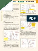 9_fasc_seletividade_cap17-fasc_seletividade_cap17.pdf