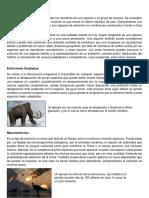 Punto 2, taller de especie y especiacion