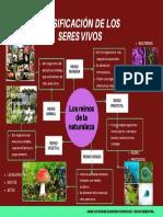 CLASIFICACION DE LOS SERES VIVOS. MAPA MENTAL