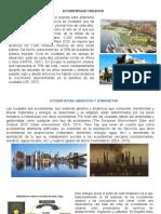Ecosistemas urbanos.pptx