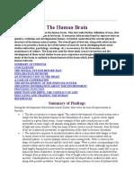 brain and evolution
