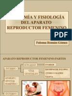 aparatofemenino-pptdiapo-121117201047-phpapp01