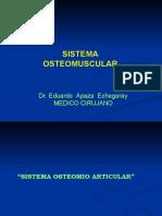 sistema-oseo-muscular1