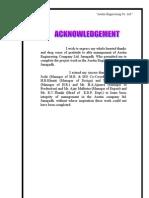 austin report